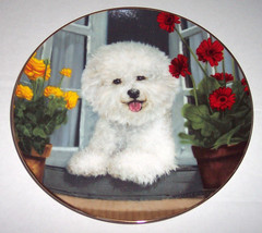 "A Perfect View ""Poodle Dog"" Collectible Plate by Michele Amatrula #A8918 - $34.99"