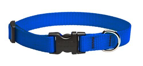"LupinePet Basics 3/4"" Blue 15-25"" Adjustable Collar for Large Dogs"