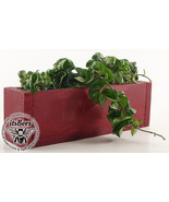 Narrow Hoya Hindu Rope Garden - Stained Wood Planter - Gift, Home, Office - $65.00