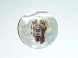 Adorable Great Dane Dog Button on Mother of Pearl MOP Shank Button Brown... - $11.87