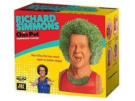 Chia Pet Planter - Richard Simmons - $29.45