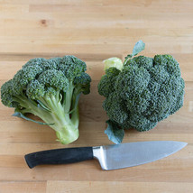 Eastern Magic Broccoli Seed ,Vegetable Seeds, Ship From US - $15.00