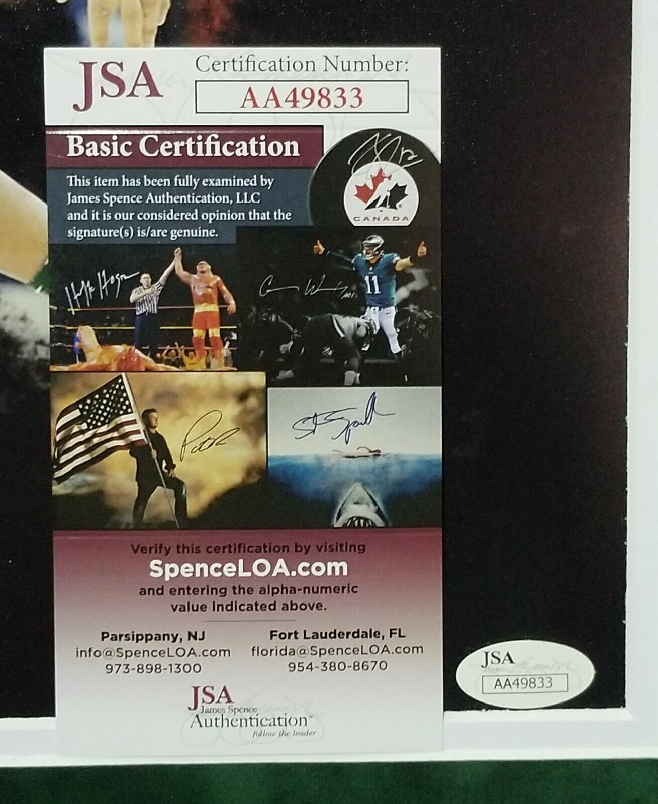 Giannis Antetokounmpo Autographed Signed 11x14 Milwaukee Bucks Framed 14x18 JSA