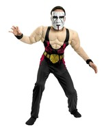 Boys WWE Wrestling Sting Deluxe Muscle Costume with Mask New - £23.32 GBP