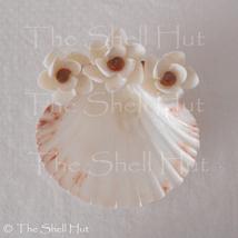 Seashell Soap Dish Shell Flower Jewelry Beach House Seashore Wedding Rin... - $29.99