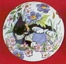 Cabinet Knobs w/ Kitten Calico in Flowers #2 - $5.25
