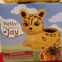 """Ceramic Animal Planter for succulents or small plants, 4"""" yellow cat, Jay Jaguar image 3"""