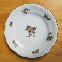 Johann Haviland Sepia Rose Bread Plate 6 Inch Beige Pink Roses Flowers 1940's - $3.47