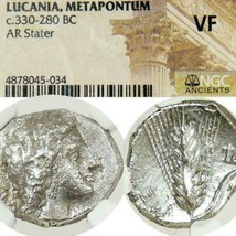 Lucania Metapontion DEMETER Grain NGC VF Ancient Greek Silver Stater Coi... - $260.10