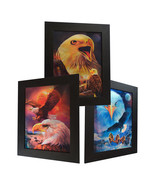 3 Dimension 3D Lenticular Picture American Bald Eagle Sunset Moon Preying Fly - $19.79