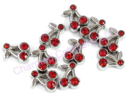 10pc Floating Charm Lot Red CZ Cherry Cherries Fits All Memory Locket Necklaces - $7.91