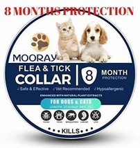 Flea Tick Collar Small Dogs Cats Pet Pest Control 8 Month Protection Adj... - €11,62 EUR