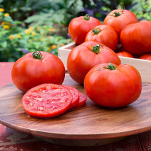 Better Boy Tomato SEEDS,(Lycopersicon lycopersicum) Organic - $1.55+