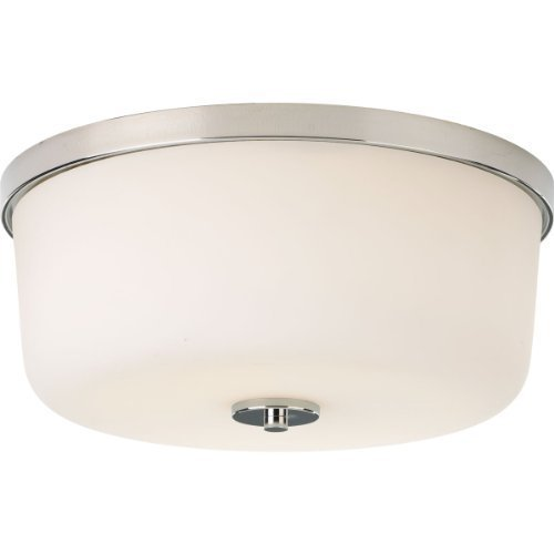 Primary image for Progress Lighting P3970-104 Transitional Two Light Flush Mount from Fortune Coll