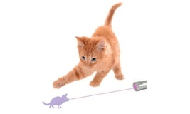 Funny Pet Cat Toys LED Laser Pointer light Pen - $2.69