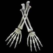 Skeleton Halloween Decoration Prop Bones Decor Haunted Skull Life Size N... - €15,45 EUR