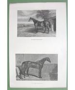 RACE HORSES in Stable & Paddock - 1860s Original Steel Engraving Print - $10.09