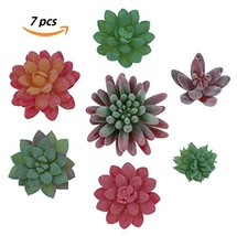Realistic Colorful Artificial Succulent Plants 7pcs - Premium Faux Fake ... - €14,45 EUR