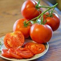 1/4 Oz Seeds of Fantastic Tomato - $83.06