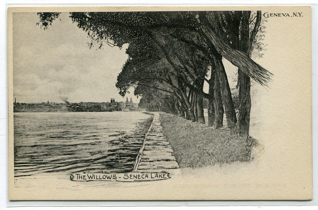 The Willows Seneca Lake Geneva New York 1907c postcard