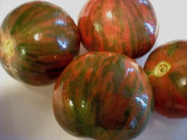 Black Vernissage Tomato! 20 Seeds! COMB S/H! SEE OUR STORE! - $15.48