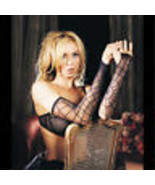 Black Gothic Vampire SPIDER WEB ARM WARMER SLEEVES Lolita Cosplay Costum... - $4.72