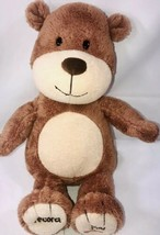 Hallmark Record A Name Singing Bear Brown Tan Soft Fur 12in Plush 2011 - $28.98