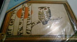 "Erica Wilson Sunset Owl Picture Creative Crewel Kit 14"" x 10"" Columbia M... - $63.21"