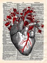 Art N Wordz Anatomical Garden Heart Original Dictionary Page Wall/Desk A... - $24.99