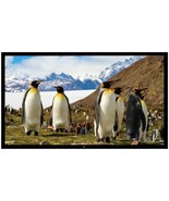 Pyle PRJTPFL112 Fixed Wall-Mount Projector Screen (110-Inch) - $294.46