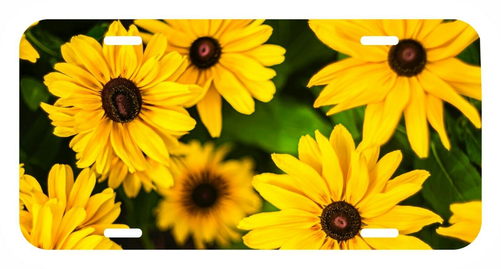 Primary image for Sun Flower Sunflower USA Metal Black License Plate holder tag
