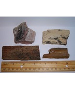Petrified Wood Lot--100% All Natural--4 Pieces From The Western US - $3.99