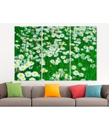 Daisy Flowers Field Canvas Print Home Wall Art Green Decor Gift For Wife... - $49.00