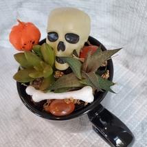 Halloween Planter with Live Succulents, Mug Garden, Skull Halloween fairy garden image 4