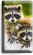 New Cute Little Raccoons Phone Telephone Wall Plate Cover Bedroom Room Art Decor - $10.77