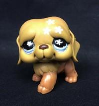 Littlest Pet Shop St. Saint Bernard Puppy Dog Brown Pink Flowers Blue Ey... - $177,98 MXN