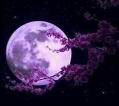 Moon3 thumb200
