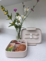 Eco Friendly Biodegradable Lunchbox 5 Compartments c/w Cutlery - $21.00