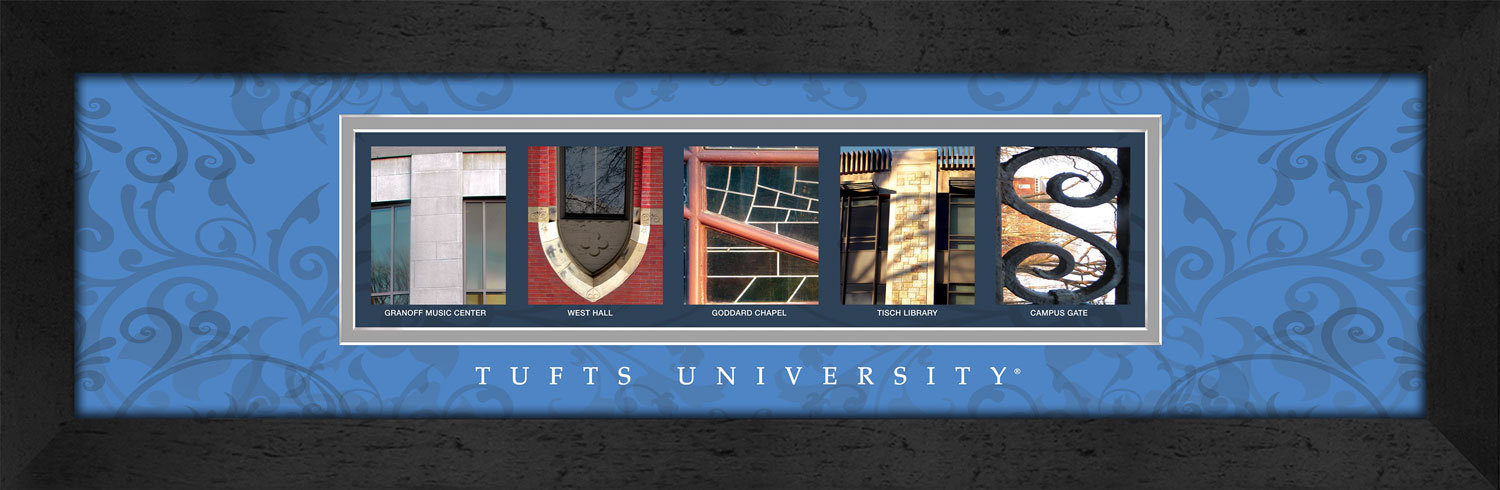 Primary image for Tufts University Officially Licensed Framed Campus Letter Art