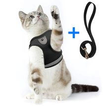 Breathable Cat & Dogs Harness And Leash - $8.00+