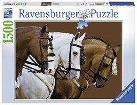 Ravensburger Fortunes Dream - 1500 Piece Puzzle by Ravensburger - $75.95