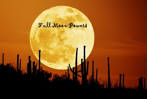 Primary image for FULL MOON SPECIAL X3 ANY SPELL YOU CHOOSE GENUINE WITCH POWERS VOODOO MAGIC
