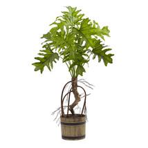 Split Philo Plant w/Bucket Planter - $67.52