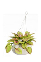 """DOLLHOUSE MINIATURE 2 3/8"""" GREENERY IN HANGING POT #RP0510 - $6.24"""