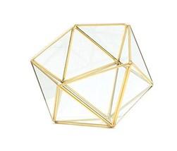 Bella's garden Gold Geometric Glass Terrarium Container DIY Desktop Plan... - $25.77