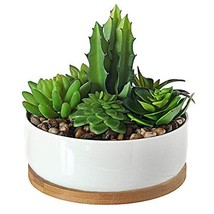 UFIG Round Bowl White Ceramic Succulents Plants Pots with Removable Tray... - $14.24
