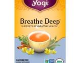 Hierbas medicinales homeopatia aromaterapia te  82 thumb155 crop