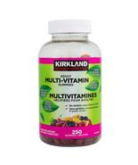 Kirkland Signature Adult Multi-vitamin Gummies -250 Gummies Canada LONG ... - $23.67