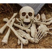 Human Skeleton Bones Plastic Halloween Skull 27Pcs Figures Decor Haunted... - $60.94