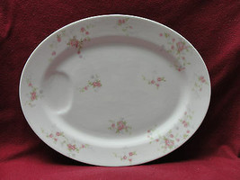 """Theodore Haviland China - Touraine Pattern - 14"""" Oval Serving Meat Platter - $24.95"""